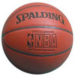 Spalding NBA Platinum Legacy basketbola bumba
