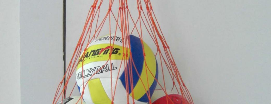Bumbu somas, tīkliņi